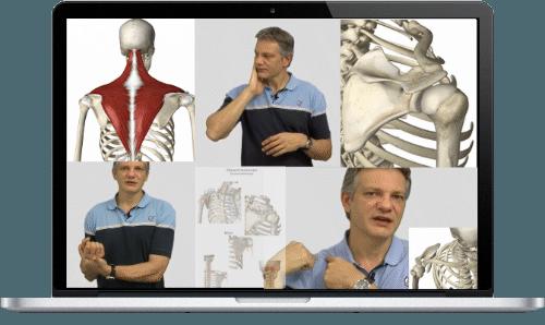 Selbsttherapie Schulter Videokurs