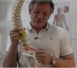 Selbsttherapie Rücken Hüftbeuger