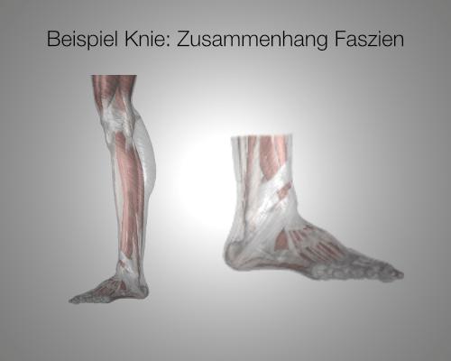 Ursachen Schmerz Knie Bein Selbsttherapie